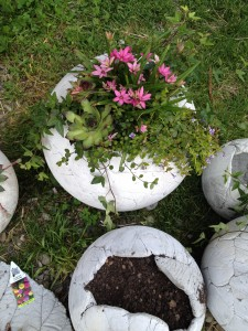 Betonkugel blühend bepflanzt